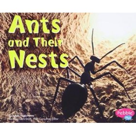 Ants and Their Nests (Animal Homes Hardback) by Linda Tagliaferro