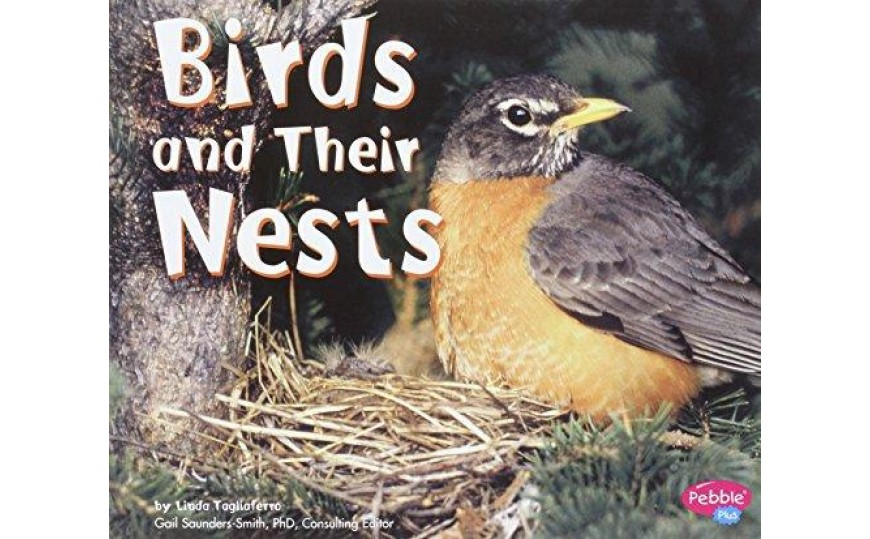 Birds and Their Nests (Animal Homes Hardback) by Linda Tagliaferro