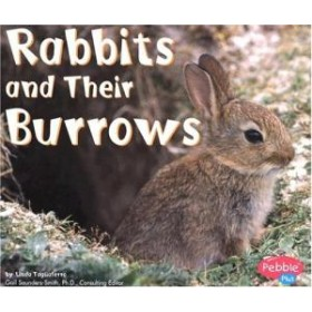 Rabbits and Their Burrows (Animal Homes Hardback) by Linda Tagliaferro