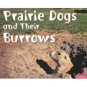 Prairie Dogs and Their Burrows (Animal Homes Hardback) by Martha E. Rustad