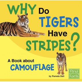 Why Do Tigers Have Stripes?: A Book About Camouflage (Why in the World?)