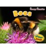 Bees (Rhyme Along: Creepy Crawlies) Hardback