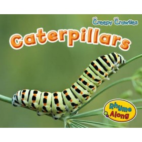 Caterpillars (Early Years: Creepy Crawlies) Hardback