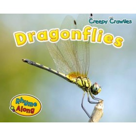 Dragon Flies (Rhyme Along: Creepy Crawlies) Hardback
