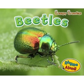 Beetles (Early Years: Creepy Crawlies) Paperback