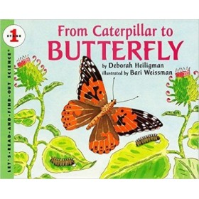 From Caterpillar to Butterfly by Deborah Heiligman