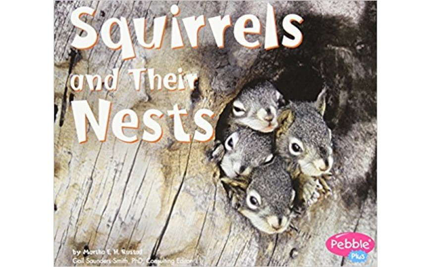 Squirrels and Their Nests (Animal Homes Hardback) by Martha E. Rustad